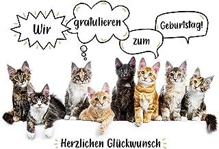 Frauen geburtstagswünsche katzen für mit Schöne Geburtstagswünsche: