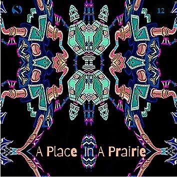 A Place in a Prairie