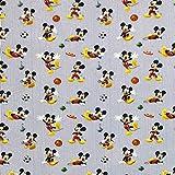 Chatham Glynn Mickey & Minnie Mouse Stoffe – CG16 – 0,5