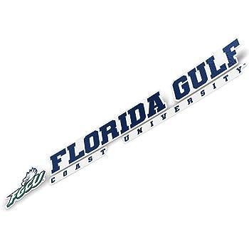 Florida Gulf Coast University FGCU Eagles NCAA Sticker Vinyl Decal Laptop Water Bottle Car Scrapbook Type 1-1 Sheet