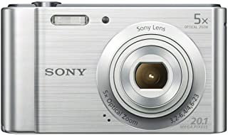 Sony DSC-W800 20.1 MP Point and Shoot Digital Camera with 5X Optical Zoom (Silver)