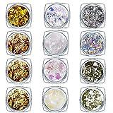 Glitter per Unghie in Polvere Chunky Glitter Foil Nail Irregolare Glitter Paillettes per Unghie Viso Corpo Capelli Occhi 12 Colori