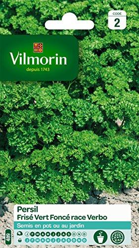 Vilmorin 3805042 Pack de Graines Persil Frise Race Verbo Sélection