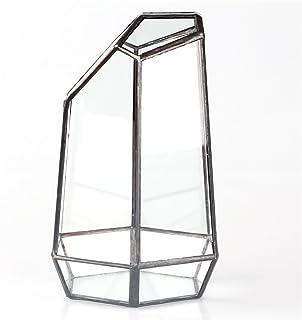 Plantas suculentas soporte, ZZM cristal casa para plantas, terrario recipiente, DIY pieza central jarrón maceta suculentas, 13* 13* 19cm