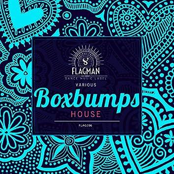 Boxbumps House