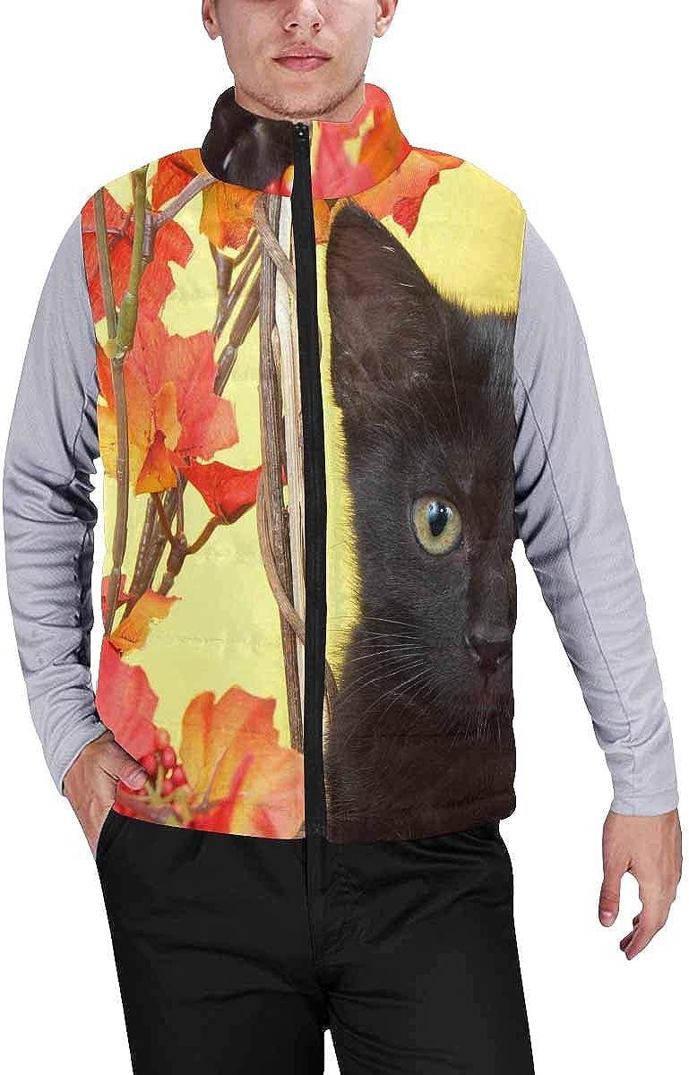 InterestPrint Men's Soft Full Zip Sleeveless Jacket for Running, Hiking Funny Sloths