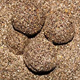 2,5kg CarpXL Groundbait Schleie Spezial