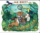 The Umbrella: board book