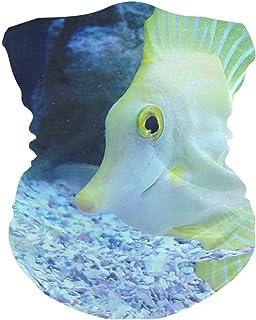 Beautiful Tropical Fish Bavaclava Face Mask for Women Bandana Neck Gaiter Half Face Masks Cold Weather Men kids