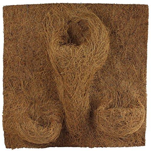 Reptiles Planet–Imagen de Fondo de Coco para terrarios para Planter 40x 40x 1cm