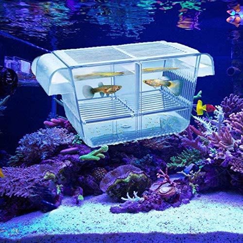 Lefunpets Aquarium Fish Breeding Box for Baby Fish Hatchery, Double Guppies Hatching Incubator Isolation Box (M 8.3x3.7x3.9 inch)