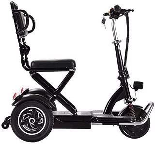 Amazon.es: triciclo