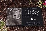 MIKITA Paw Prints Pet Memorial Stones, Black Granite Memorial Garden Stone Engraved with Pet's Photo,Free Headstones Stand