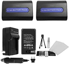 2-Pack NP-FH40 / NP-FH50 High-Capacity Replacement Batteries with Rapid Travel Charger for Sony DCR-SR36 DCR-SR37 DCR-SR38 DCR-SR40 DCR-SR42 - UltraPro Bonus Kit