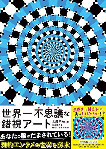 世界一不思議な錯視アートの詳細を見る