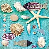 Beach Treasures 2017: Kalender 2017 (Artwork Edition)