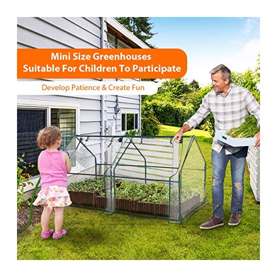 "Tooca 71"" x35"" x35"" portable greenhouse for indoor outdoor gardens/patios/backyards, suitable young plants (not included garden bed) 4 【perfect plant protection】clear pvc cover can stop plant seeds or young plants from frost, and keep internal moisture. It's ideal for maintaining seeds' breeding and plants' growing, helping extend the growing season for all year around. 【2 roll-up zippered doors】the mini greenhouse has two doors, which makes it easy and convenient for watering and ventilation. 【steady & reliable】iron frame with spray paint rust prevention treatment is sturdy and durable."