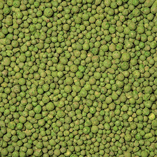 brockytony 4-8 mm. (Pflanzton, Pflanzgranulat, Blähton) 5 Liter. Bambus GRÜN. BT456Y5