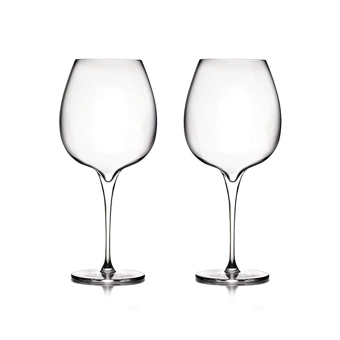 同化する収入扱いやすいNambé mt0948?Vie Pinot Noirワインメガネ、クリア