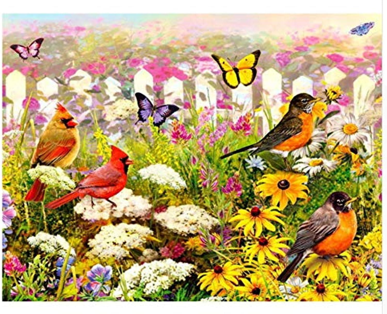 Agolong Agolong Agolong DIY malerei by Zahlen Vogel Schmetterling acryl malerei Moderne Bild wohnkultur für Wohnzimmer Mit Rahmen 40x50cm B07LDT2DCF | Innovation  a42d9b