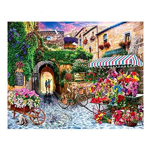 60x75 cm schilderen op nummer, doe-het-zelf digitaal schilderij, bloem, fiets, bloem, street, frameless tekening op canvas 40x50cm no frame 7