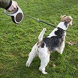 flexi Roll-Leinen-Zubehör Vario Soft Stop Belt L schwarz (für flexi Vario Leinen Gr. L) Rückdämpfergurt für Hunde bis max. 60 kg - 5