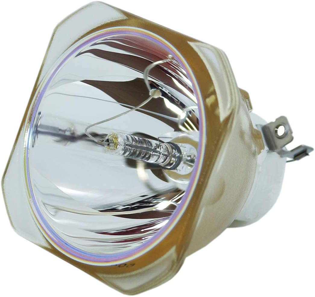 Branded Spring new work one after another goods Lutema Economy Bulb for NEC PA600X-13ZL Lamp Only Projector