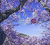さくら桜 伊那高遠 美しき春