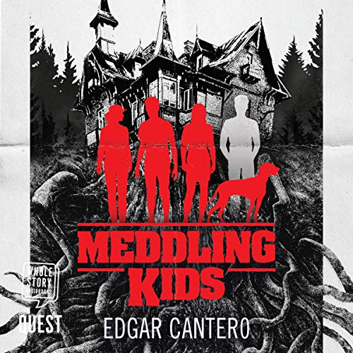 Meddling Kids cover art