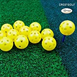 Crestgolf 12/50 Pack Plastic Golf Training Balls – Airflow Hollow 40mm Golf Balls for Driving Range, Swing Practice, Home Use,Pet Play.(Yellow,12 Pack)