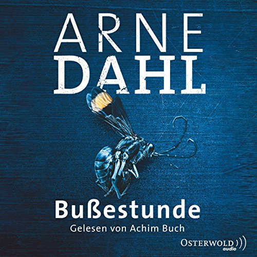 Bußestunde audiobook cover art