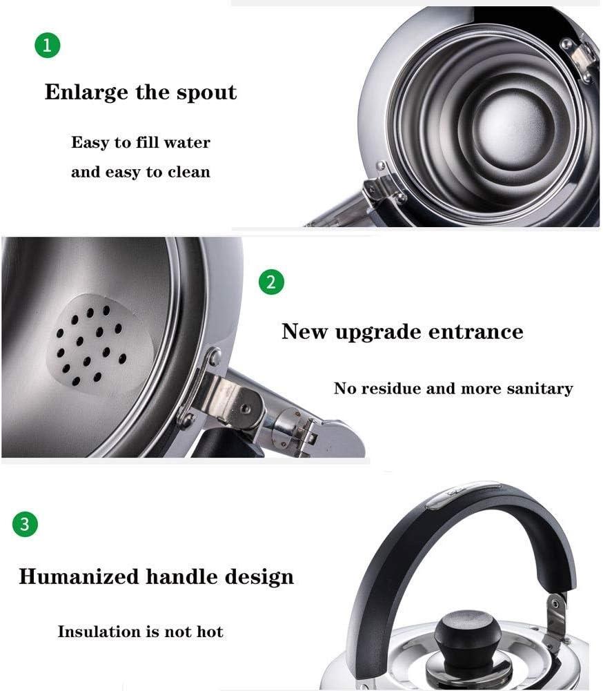 Whistle Theepot-Ergonomische Roestvrijstalen Theepot, Grote Theepot Voor Huishoudelijk Gebruik 3L-6L (Kleur: Zilver, Maat: Silver