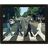 BEATLES ビートルズ (来日55周年記念) - Abbey Road 3D / インテリア額 【公式/オフィシャル】