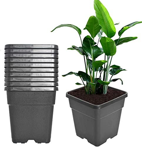 discount Square popular Nursery Pots popular Plant Pots Grow Pots Nursery Container Fit for Planting Soil Plants 5 Gallon 10Pcs online sale