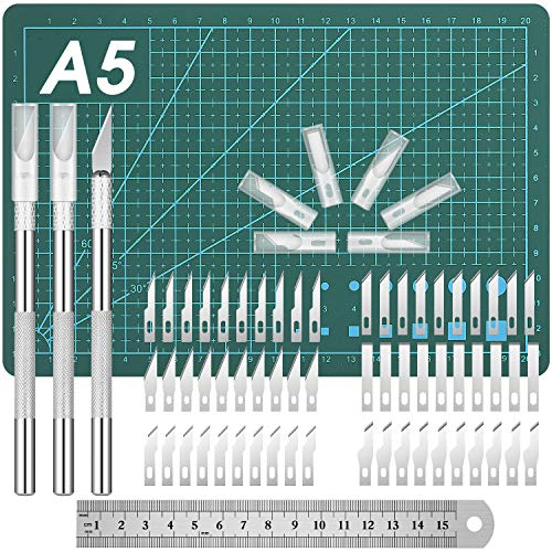 Craft Knives Set, Include Hobby Knife Carving Knives Precision Knife Stencil Knife Blades Cutting Mat Stainless Steel Ruler for Art Hobby Craft (65)