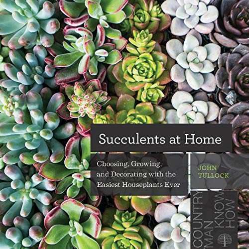 Succulents at Home: Choosing, Growing, and Decorating with the Easiest Houseplants Ever
