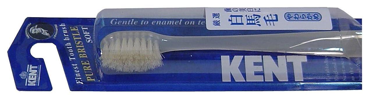 充電影響力のある気絶させるKENT 白馬毛歯ブラシ コンパクトヘッド やわらかめ KNT-1132 ×5個セット