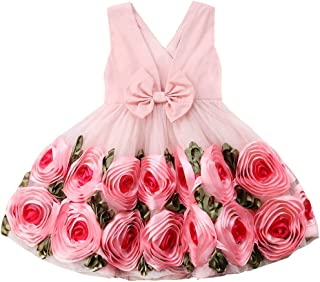 AGQT Baby Girls Tutu Dress Sleeveless Kids Bowknot 3D Flower Tulle Princess Formal Pageant Birthday Party Dress