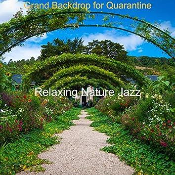 Grand Backdrop for Quarantine