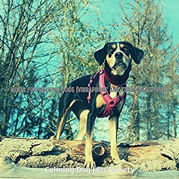 Music for Walking Dogs (Vibraphone and Tenor Saxophone)