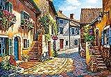 Amnogu Puzzles Rompecabezas Castorland European Streets, 1000 Piezas, Rompecabezas, Juguetes