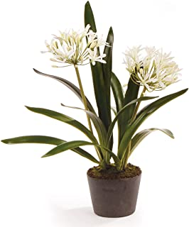 Best artificial agapanthus flowers Reviews