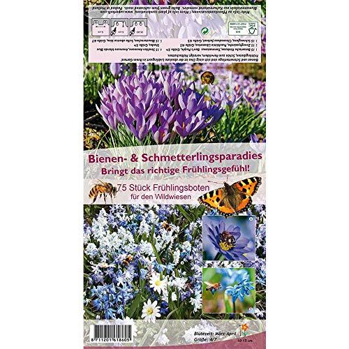Florado 75x Bienen- & Schmetterlingsparadies Blumenzwiebeln, Zwiebeln Zwiebelblumen, Garten Kübel Vasen, Bienen Insekten, Größe 4/7