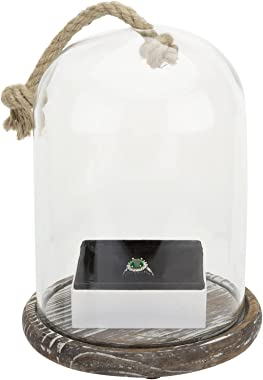 MyGift Clear Glass Cloche Dome Jar Cover Plant Terrarium/Case Centerpiece with Rustic Torched Wood Base and Decorative Rope H
