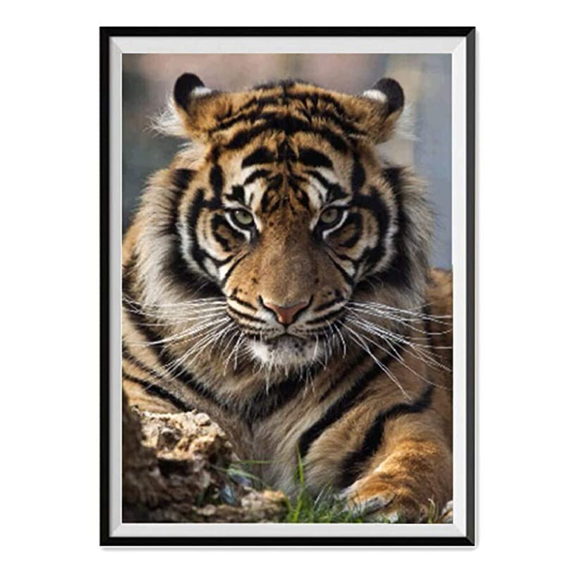Leepakyuan DIY 5D Diamond Painting by Number Kits, Full Drill Crystal Rhinestone Embroidery Pictures Arts Craft for Home Wall Decor Gift, Aggressive Tiger, 12inch×16inch