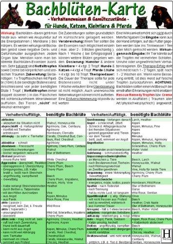 Bachblüten-Karte für Hunde, Katzen, Kleintiere und Pferde - Verhaltensweisen und Gemütszustände (2005-01-01)