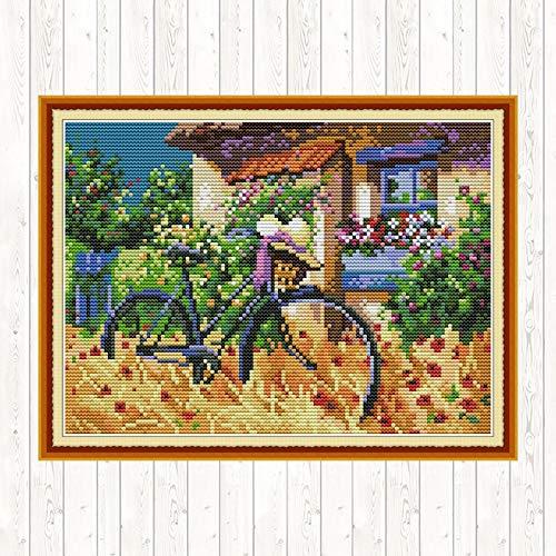 Fahrrad Scenic Gemälde Kreuzstich Fabric Aida 14ct 11ct Gezählt auf Leinwand gedruckt Stickerei Kit DMC DIY Handgefertigte Hand (Cross Stitch Fabric CT Number : 11ct Counted Canvas)