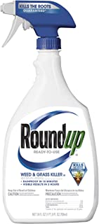 Roundup 5003080 Weed and Grass Killer III Ready-to-Use Trigger Spray, 24-Ounce