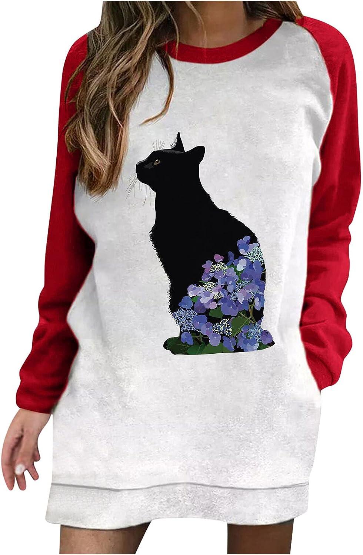 iQKA Women Casual Shift Dress Cute Animal Print Colorblock Long Sleeve Crew Neck Sweatshirt Pullover Dresses