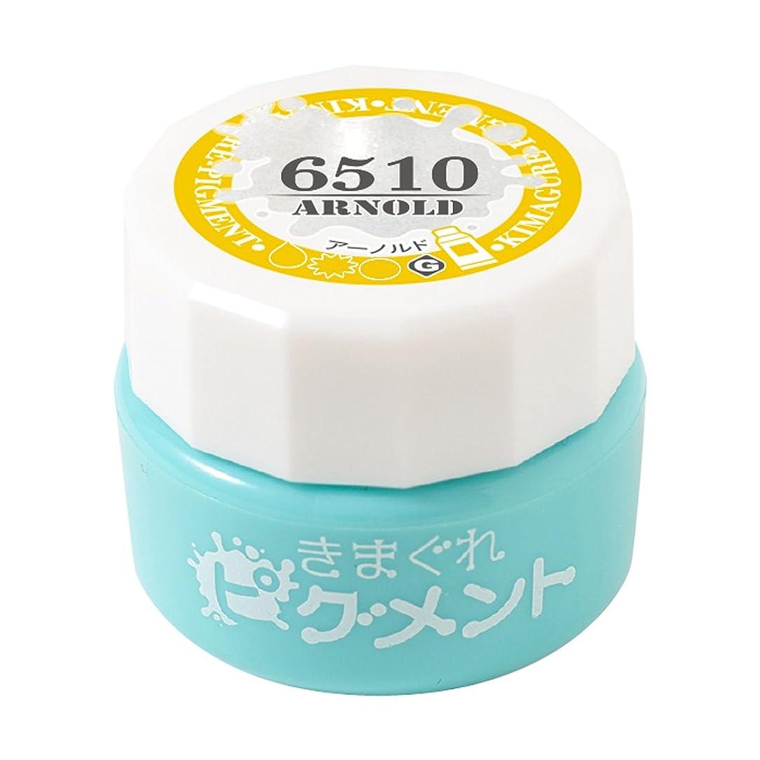 ソケット米ドル額Bettygel きまぐれピグメント アーノルド QYJ-6510 4g UV/LED対応